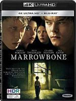 [西班牙] 馬柔本宅秘事 (El secreto de Marrowbone) (2017)