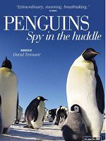 [英] 企鵝的秘密生活 (Penguins:Spy in the Huddle) (2012)